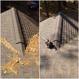 residential gutter cleaning green bay